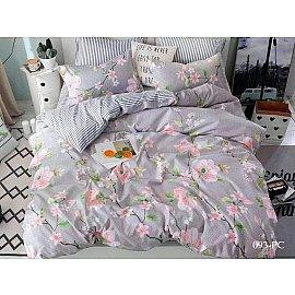 КПБ Поплин Pure cotton 093 (1.5 спальный)