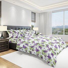 КПБ бязь Eco cotton Purple (2 спальный)