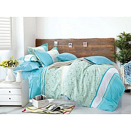 КПБ Сатин Twill дизайн 251 (2 спальный)
