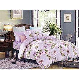 КПБ Сатин Twill дизайн 601 (2 спальный)