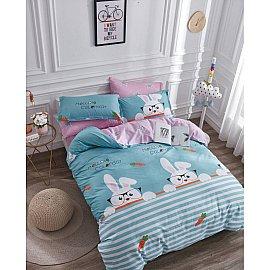 КПБ Сатин Twill дизайн 224 (1.5 спальный)