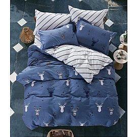 КПБ Сатин Twill дизайн 594 (2 спальный)