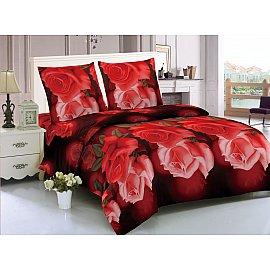 КПБ мако-сатин печатный Amsterdam (1.5 спальный), красный