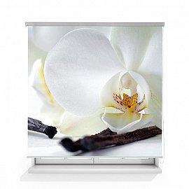"""Рулонная штора ролло термоблэкаут """"Орхидея и ваниль"""", 120 см"""