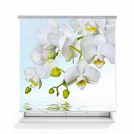 """Рулонная штора ролло лен """"Орхидея над водой"""", 140 см"""