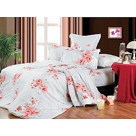 Комплект постельного белья B-113-d (2 спальный)