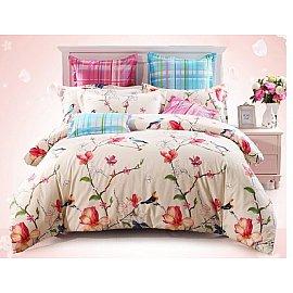 Комплект постельного белья CL-173-d (2 спальный)