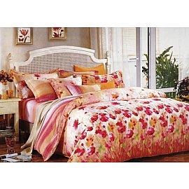 Комплект постельного белья C-140-d (2 спальный)