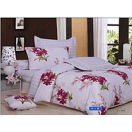 Комплект постельного белья C-61-d (2 спальный)