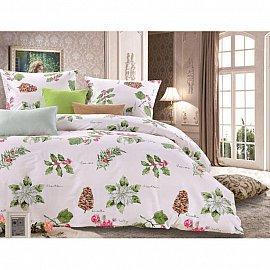 Комплект постельного белья C-182-d (2 спальный)