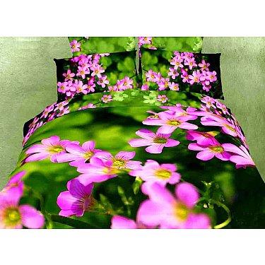 КПБ Сатин дизайн 581 (1.5 спальный)-A